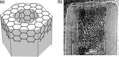 Toroidal And Coiled Carbon Nanotubes